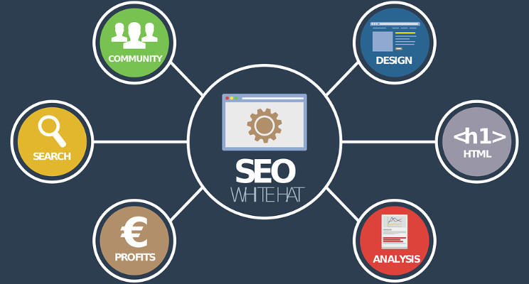 How Important Is Seo In The Field Of Digital Marketing?